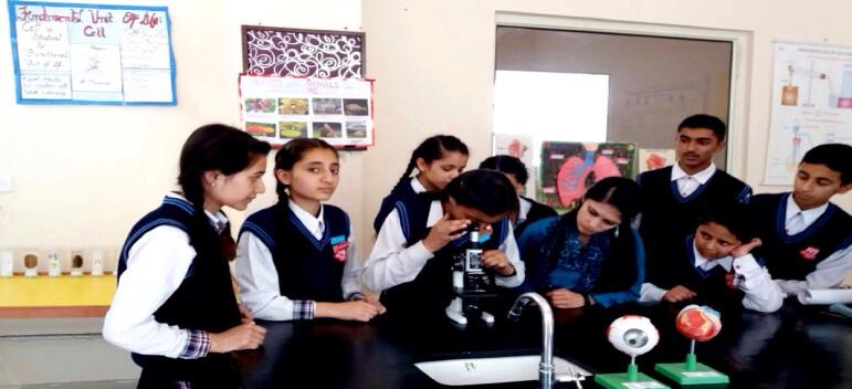 Ivy-International-School-Shimla-small1